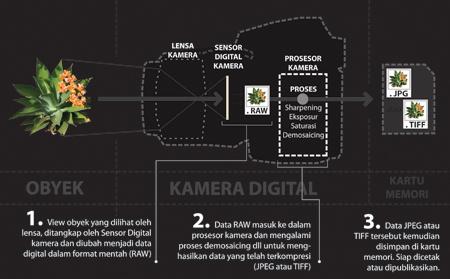 PROSES DATA-01 JPEG